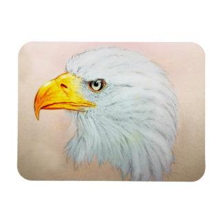 White & Yellow animal art, Photo Magnet - Eagle