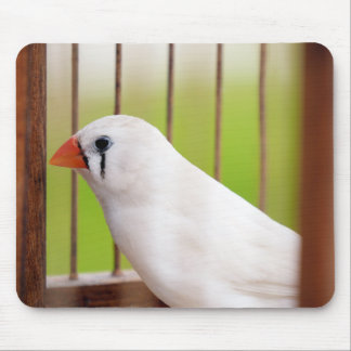 White Zebra Finch Bird in Cage Mouse Pad