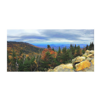 Whiteface Adirondacks Canvas Print