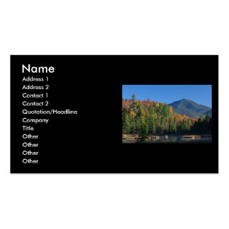 Whiteface Mountain over Little Cherrypatch Pond Pack Of Standard Business Cards