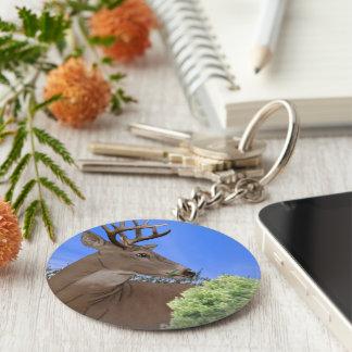 Whitetail Buck Deer Key Ring