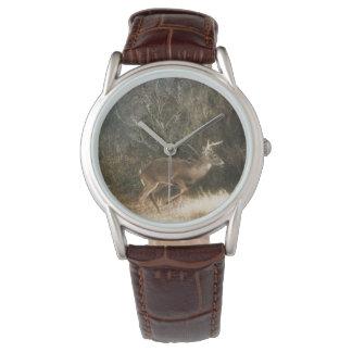 Whitetail Buck Watch