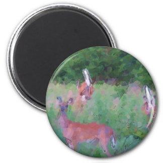 Whitetail Deer 6 Cm Round Magnet
