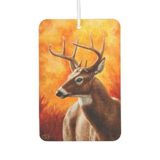 Whitetail Deer Buck Hunting