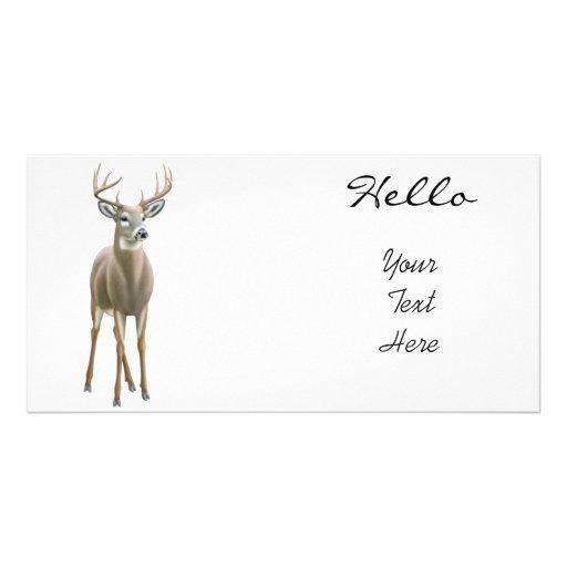 Whitetail Deer Buck Photo Card