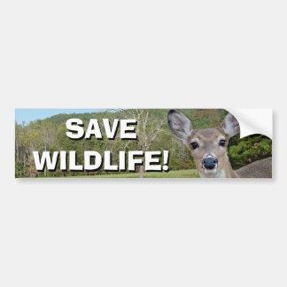 Whitetail Deer (Doe) Bumper Sticker Car Bumper Sticker