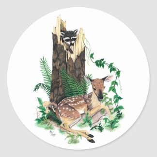 Whitetail Deer Fawn and Raccoon Sticker