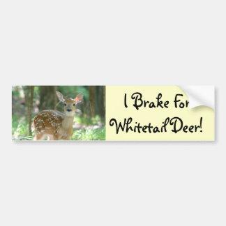 Whitetail Deer Fawn Bumper Sticker Car Bumper Sticker