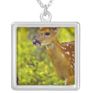 Whitetail deer fawn in Whitefish, Montana, USA Square Pendant Necklace