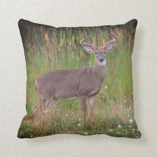 Whitetail Deer Portrait Pillow
