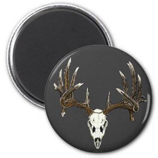 Whitetail deer skull 1 6 cm round magnet