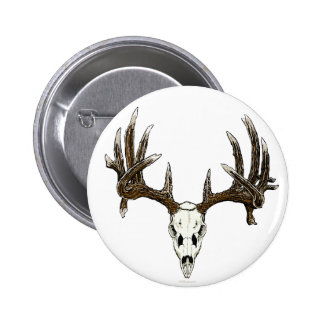 Whitetail deer skull 1 pinback button
