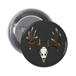 Whitetail deer skull 1 buttons