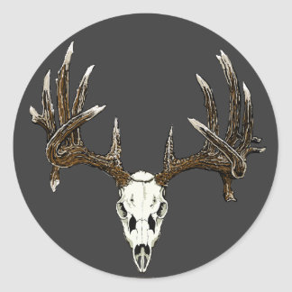Whitetail deer skull 1 classic round sticker