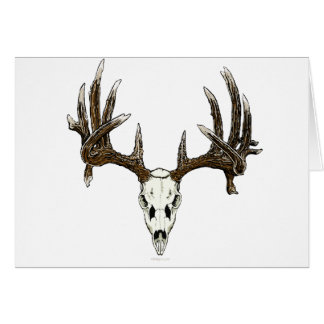 Whitetail deer skull 1 greeting card