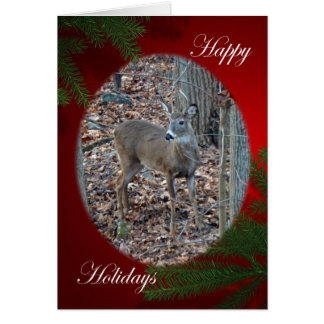 Whitetail Deer Spike Buck Happy Holidays Series Card