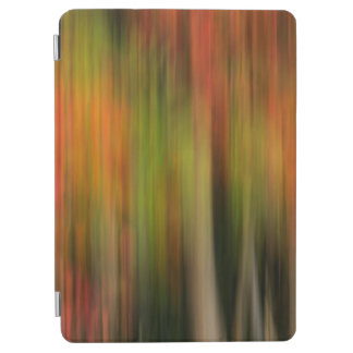 Whitman Mission National Historic Site, WA iPad Air Cover