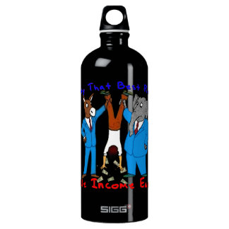 Who Best Represents Middle Incomers? SIGG Traveller 1.0L Water Bottle
