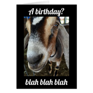 """""""WHO"""" CARES """"I CARE"""" THE GOAT SAYS HAPPY BIRTHDAY CARD"""