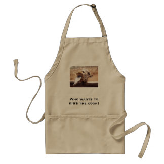 Who wants to KISS the cook? Standard Apron