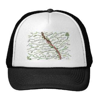 Who We Are in Christ - 85 names God gives to us Trucker Hats