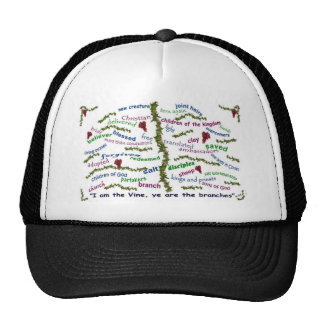 Who We Are in Christ Hat