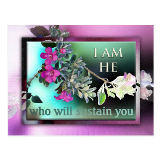 Who Will Sustain You Postcard