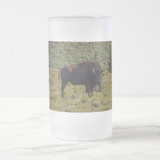 Who You Looking At Frosted Glass Beer Mug
