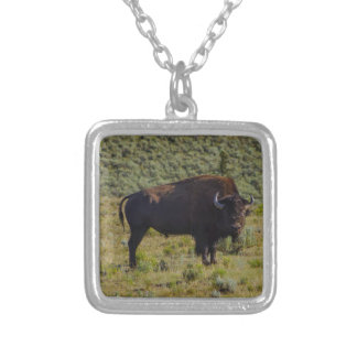 Who You Looking At Silver Plated Necklace