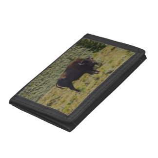 Who You Looking At Trifold Wallets
