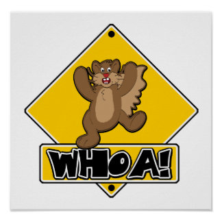 Whoa Squirrel Crossing Sign Poster
