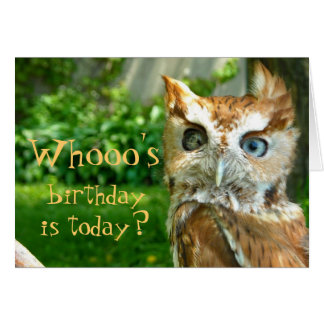 Whooo's Birthday Card