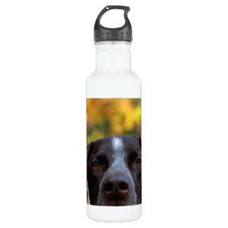 Who's Dat Dog? 710 Ml Water Bottle