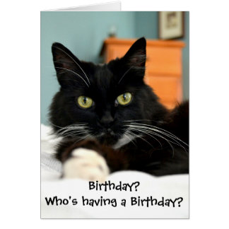 Who's Having a Birthday? Greeting Card