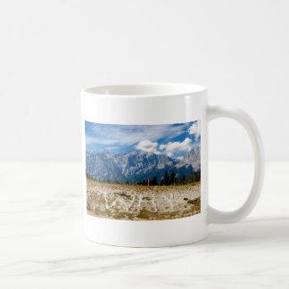 Why? Basic White Mug