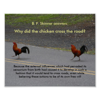 Why Did The Chicken Cross? - (small) poster