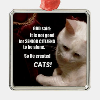 Why God created Cats (humor) Silver-Colored Square Decoration