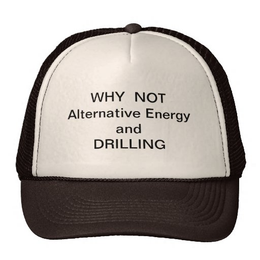 WHY  NOT Drilling and Alternative Energy Mesh Hats
