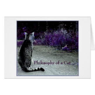 Why the grass is violet? meow card