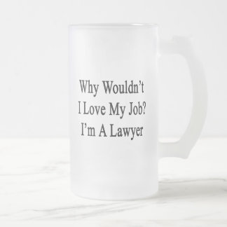 Why Wouldn't I Love My Job I'm A Lawyer Frosted Glass Mug