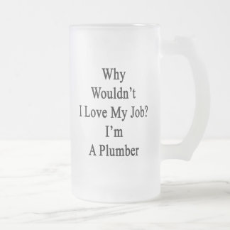 Why Wouldn't I Love My Job I'm A Plumber Frosted Glass Mug