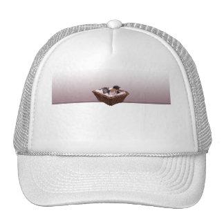 Wicker Basket with Kittens Hat