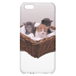 Wicker Basket with Kittens iPhone 5C Case