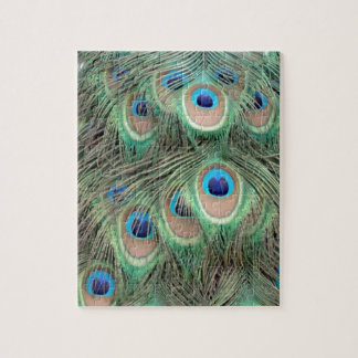 Wide Spreed Of Peacock Eyes Jigsaw Puzzle