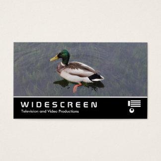 Widescreen 390 - Mallard Duck