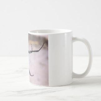 Widow's Web Coffee Mug