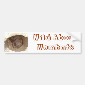 Wild About Wombats Bumper Stickers