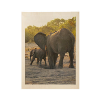 Wild African Elephant Mother and Child Wood Poster