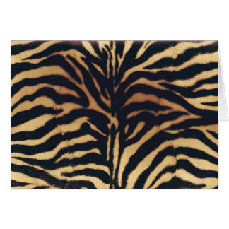 WILD AFRICAN FAUX ZEBRA GREETING CARD