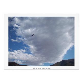 """""""Wild and Free"""" Lake Berryessa Photo Art"""